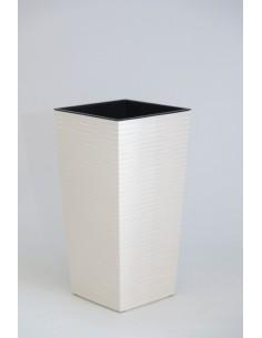 Test blanc llarg - Anthurium