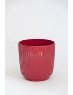 Test ceràmica vermell -...